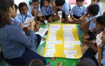Grade 1- Grammar made Fun with Playing the Gender Game!